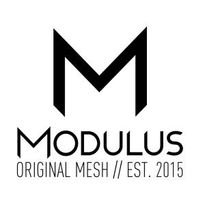 MODULOUS_Logo