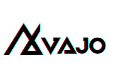 navajo _hollowaystore_logo
